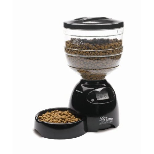 automatic pics sale on feeders feeder all day dog pet